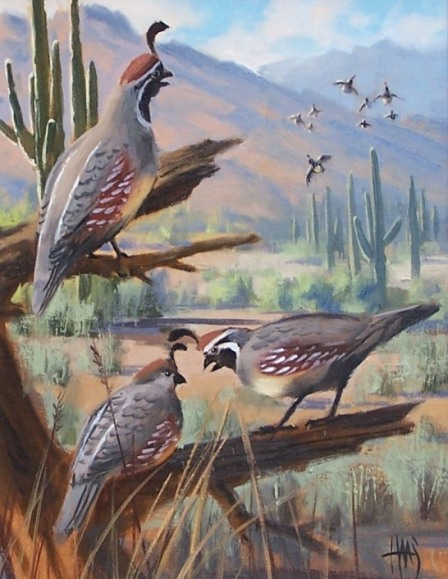 Wildlife oil paintings