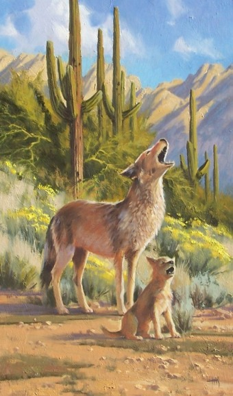 "Coyote Chorus 30"" x 18"" oil painting by Tom Haas"