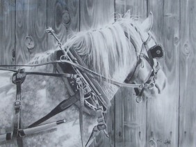 "Dottie 24"" x 30"" graphite drawing by Tom Haas"