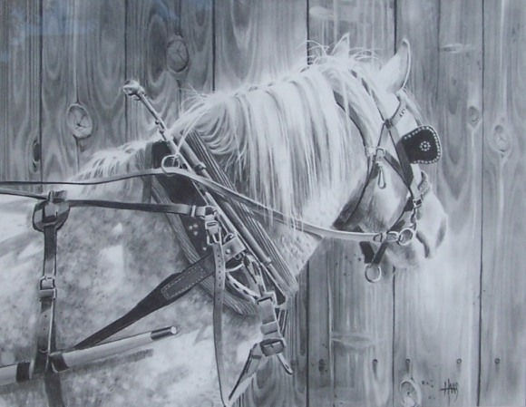 """Dottie 24"""" x 30"""" graphite drawing by Tom Haas"""