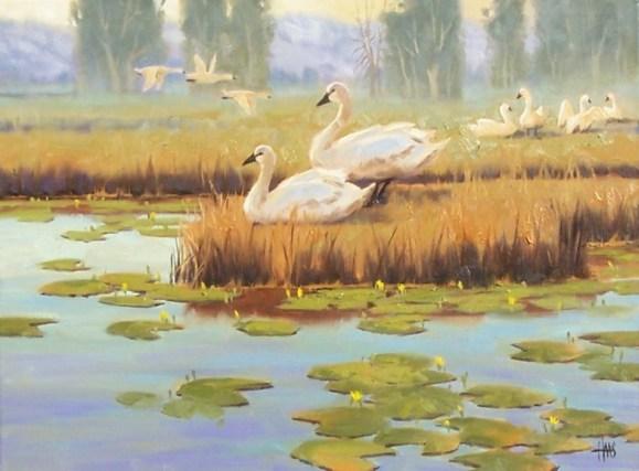 Wildlife oil paintings