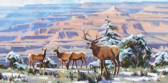 Wildlife Elk Grand Canyon oil paintings