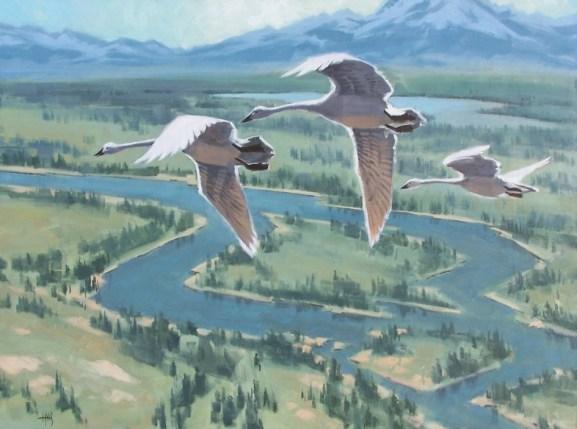 wildlife Jackson Hole, Wyoming oil painting