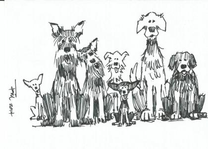 Sam and Friends 2014 cartoon drawing by Tom Haas