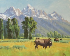 wildlife buffalo oil painting
