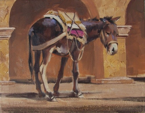 "burro Waiting 11"" x 14"" oil apinting by Tom Haas"
