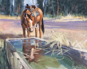 "Water Trough - Vera Earl Ranch, Sonoita, Arizona 11"" X 14"" oil painting by Tom Haas"
