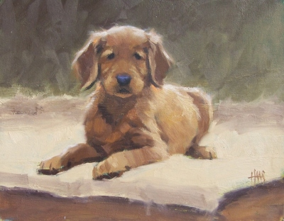 "Sam Puppy 11"" x 14"" oil painting by Tom Haas"