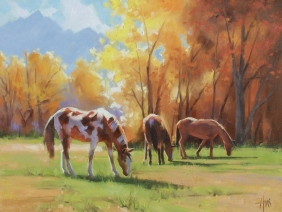 """Amber Light 18"""" x 24"""" oil painting by Tom Haas"""