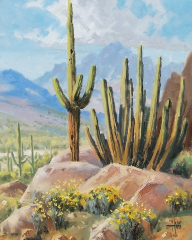 """Sonoran Hilltop 20"""" x 16"""" oil painting by Tom Haas"""