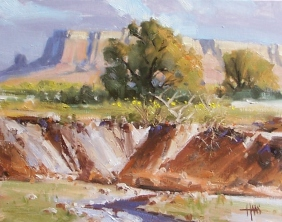 "Arroyo 11"" x 14"" oil painting by Tom Haas"
