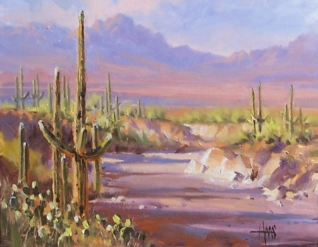 "Sonoran Desert Wash 11"" x 14"" oil painting by Tom Haas"