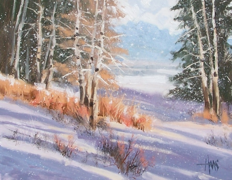 """Soft Flakes - Colorado 11"""" x 14"""" oil painting by Tom Haas"""
