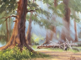"Misty Trail - Little Bear Loop, Coconino National Forest, Arizona 11"" x 14"" oil painting by Tom Haas"