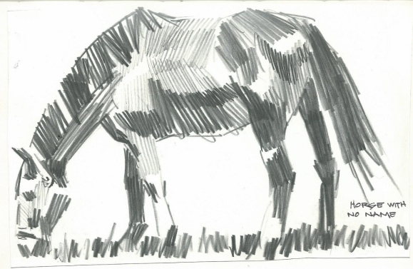 Horse With No Name graphite sketch by Tom Haas