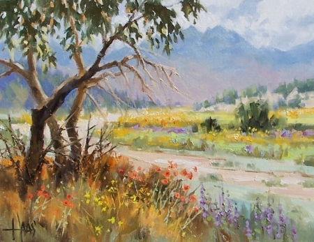 """Weeds and Wildflowers - Arizona 11"""" x 14"""" oil painting by Tom Haas"""