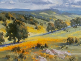 "Sonoita Foothills - Arizona 11"" x 14"" oil painting by Tom Haas"