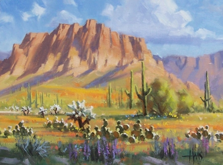 """Superstition Poppies - Arizona 12"""" x 16"""" by Tom Haas"""