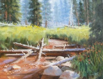 "Meadow's Fragrance - Arizona 11"" x 14"" oil painting by Tom Haas"