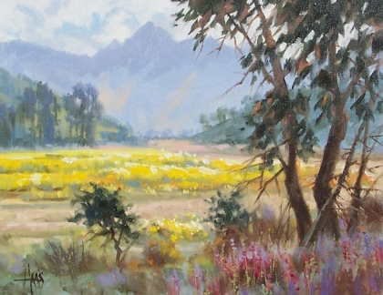 """Season of Color - Southern Arizona 11"""" x 14"""" oil painting by Tom Haas"""