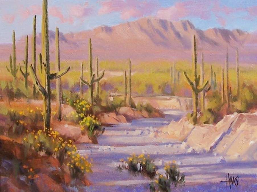 """South of Oracle - Arizona 12"""" x 16"""" oil painting by Tom Haas"""