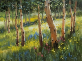 """Aspen Glade - Colorado 11"""" x 14"""" oil painting by Tom Haas"""
