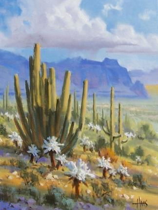 """Organ Pipe - Arizona 16"""" x 12"""" oil painting by Tom Haas"""